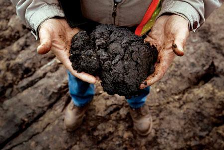 Bitumen from the Alberta tar sand before processing