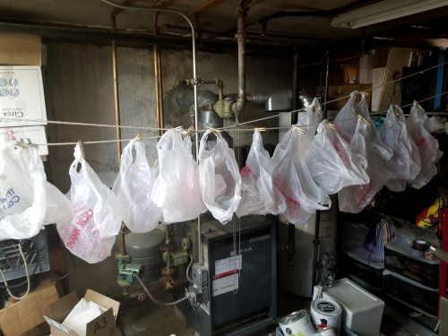 plastic bags decontaminatimg